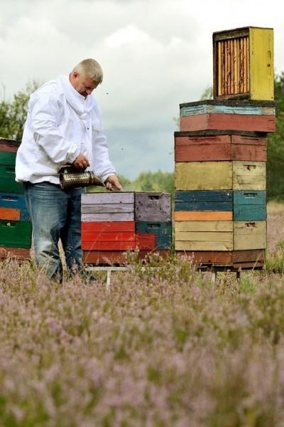 pszczelarz na pasiece